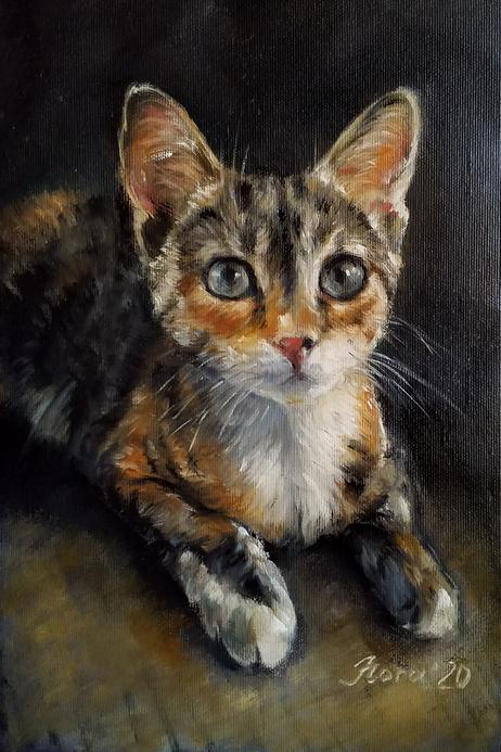 портрет кошки на заказ портрет маслом